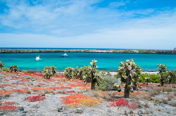 580x382_Galapagos