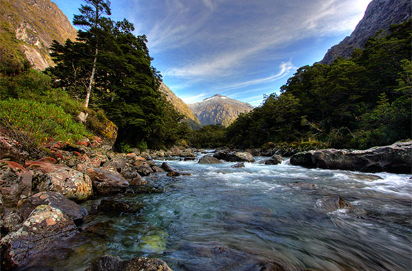 580x382_Fiordland-National-Park_NZ