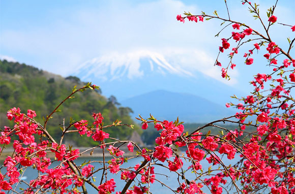 580x382_Fuji-Hakone-Izu-National-Park_Japan